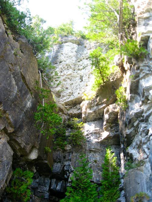 2009 Bruce Trail
