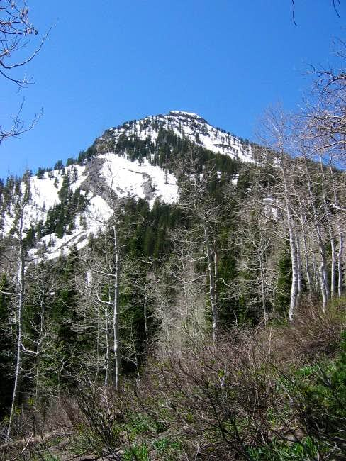 Kessler Peak viewed from near...