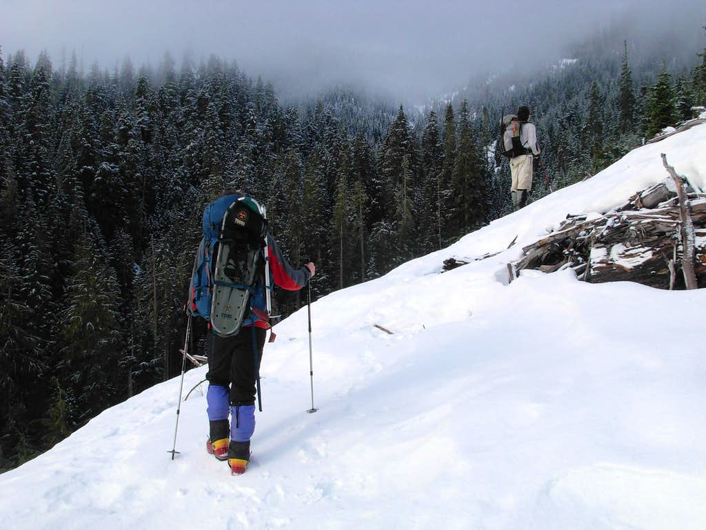 Ascending Along Creek Tributary