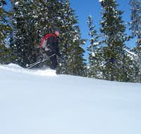 Skiing the foothills of the Central Oregon Cascades Near Mt Washington