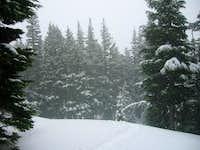 TJ Trail Snow