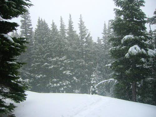 TJ Trail Snow