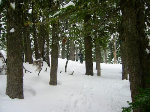 tj trail 2