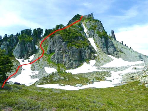 Mt Forgotten Summit Route
