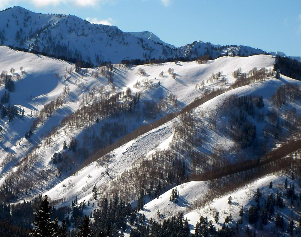 The killer avalanche in Silver Fork's Meadow Chutes