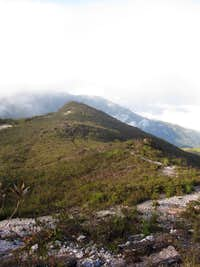 The foliage on the summit is shrubby, compared to the virgin growth rainforest during the 40 km approach