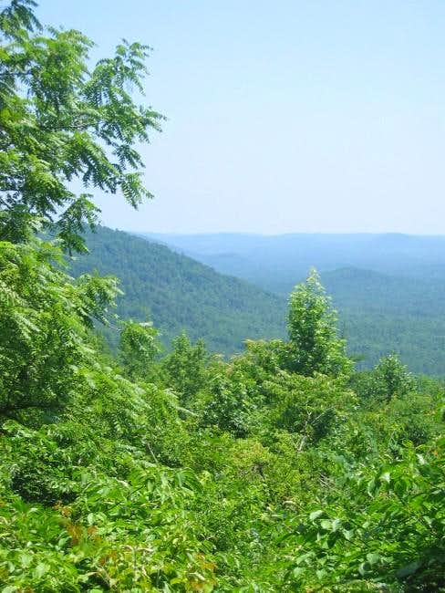 Morrow Mountain (Uwharrie Group)