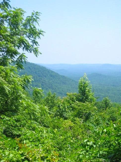 Morrow Mountain (Uwharrie Group)