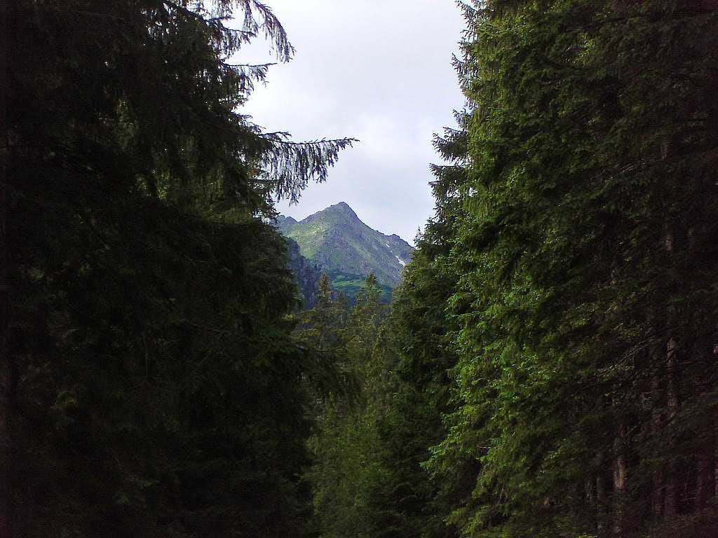 Opalony from route to Morskie Oko