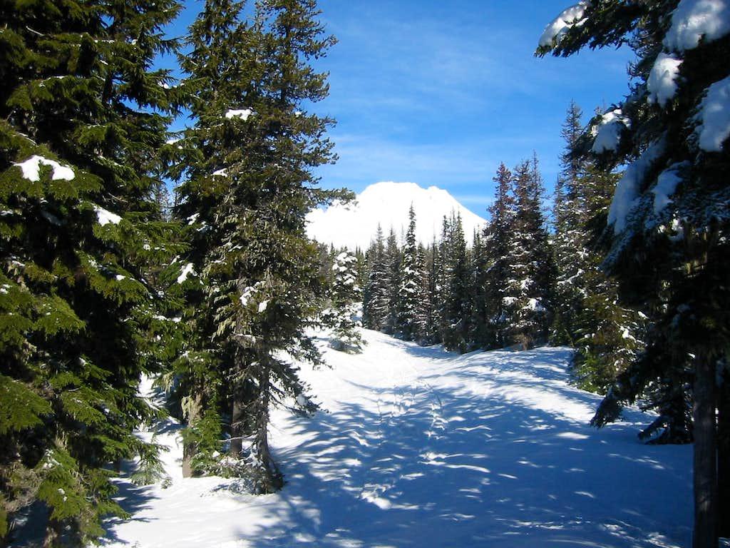 Glade Trail