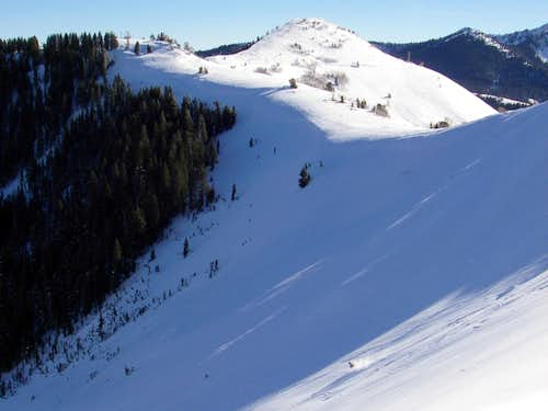 Skiing South Monitor