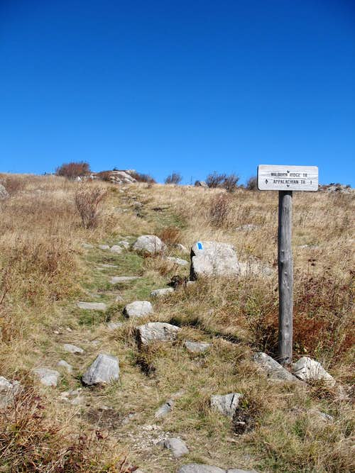 Wilburn Ridge Trail