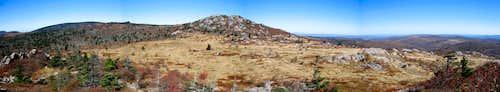 Wilburn Ridge & Mt. Rogers