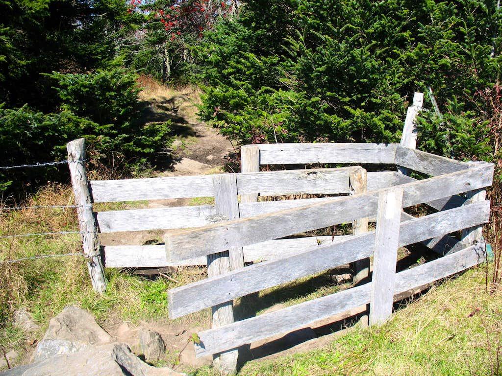 Cattle Gate...