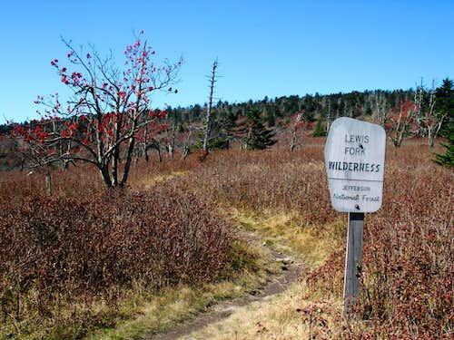 Lewis Fork Wilderness