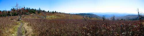 Appalachian Trail Beauty