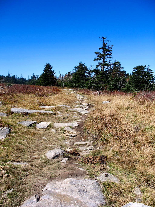 Mt. Rogers Landmine