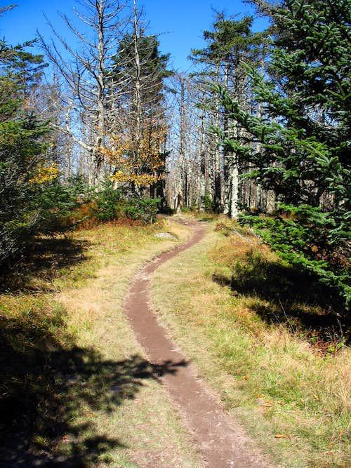 Peaceful Trail