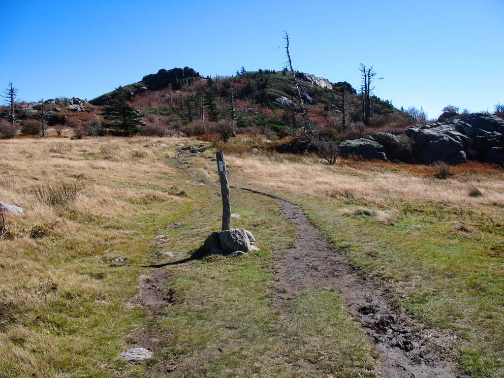 Appalachian Trail on Wilburn Ridge
