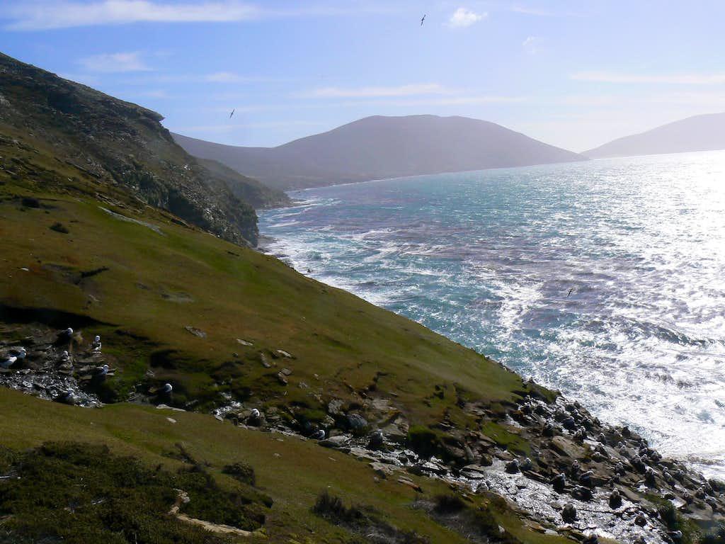 Rookery Mountain Sea Cliffs