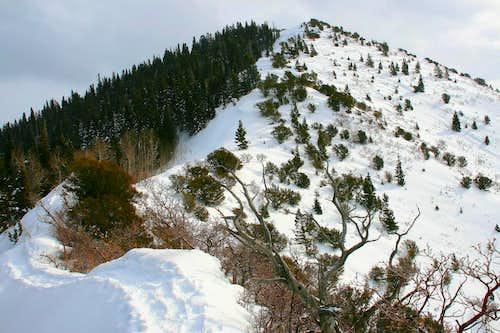 Millvue Peak.