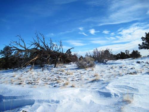 Snowy summit plateau