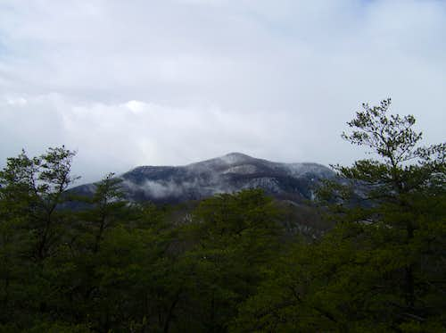 Pinnacle From Table Rock