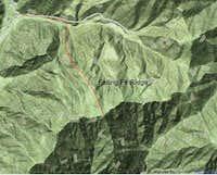 Falling Fir Ridge