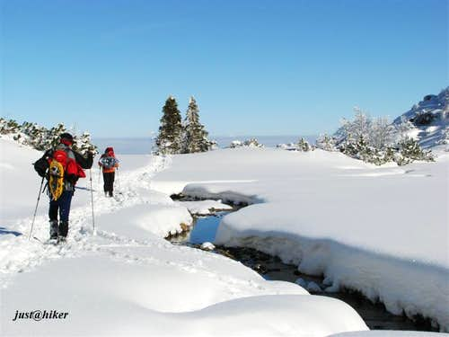 Snow Idyll