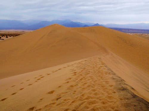 The Highest Dune