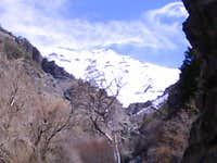 Timpanogos seen from Battle Creek