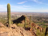 Looking out over Scottsdale