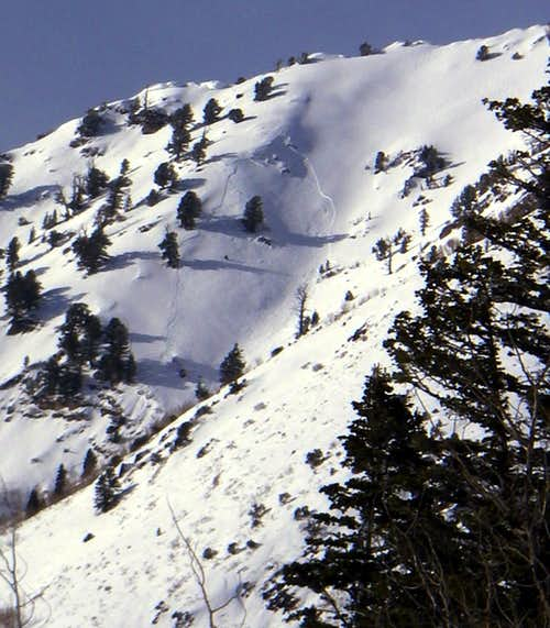 Avalanche on Gobblers Knob