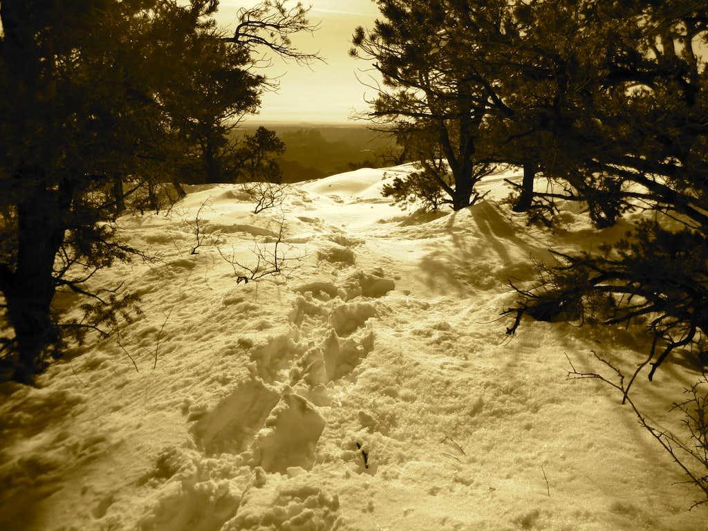 Nankoweap Trailhead