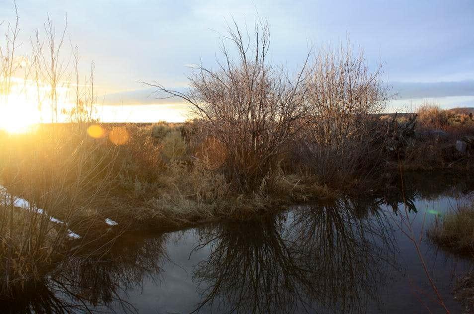 Sunset at Willow Creek