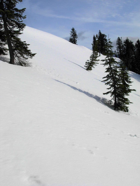 Alpine Baldy - West Slope
