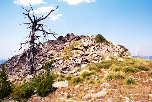 False Summit