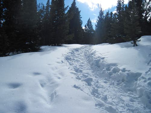 Snow trench toward Democrat Mountain