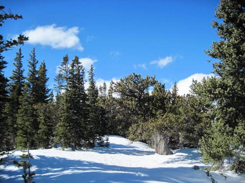 Democrat Mountain Summit Area