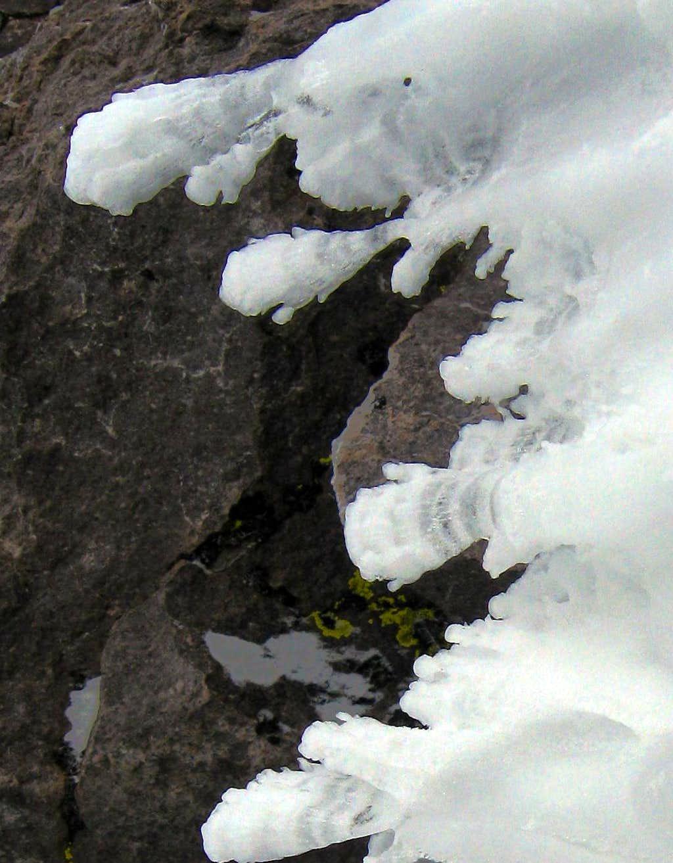 Rime on Sargents Ridge