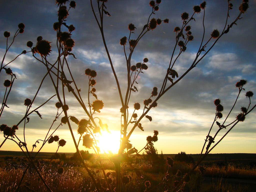 sunrise at Black Mesa State Park