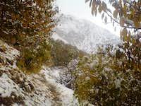 climbing in sangan