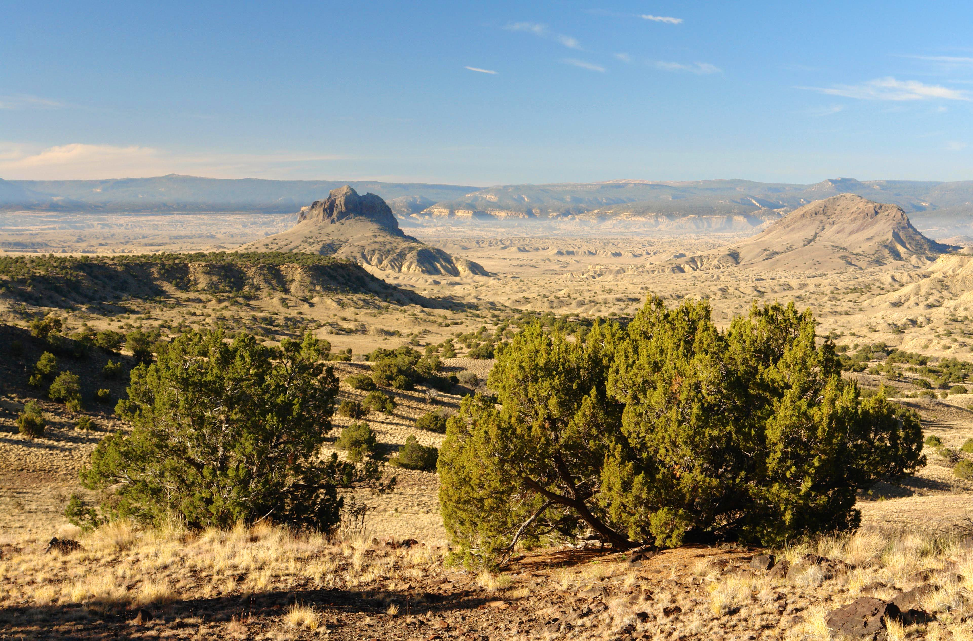 Cabezon Peak Area