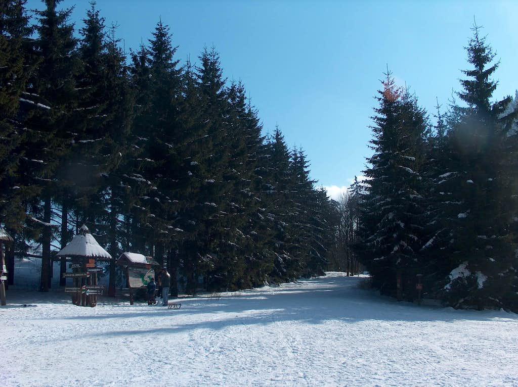 View from Andrzejowka hut