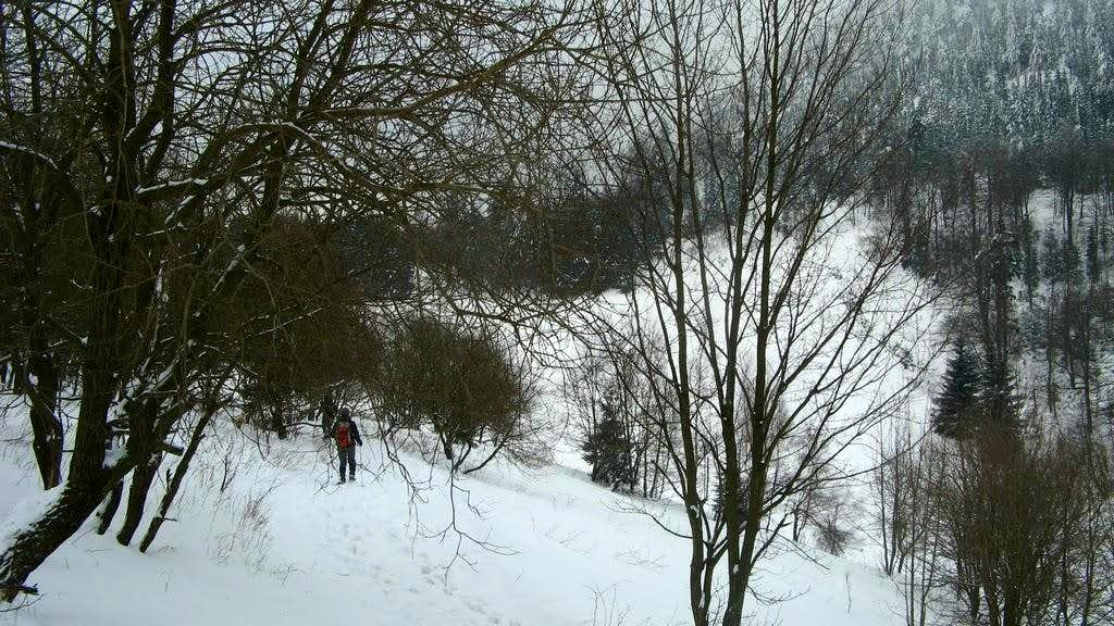 Going down from Bukowiec