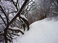 Winter on Milesovka