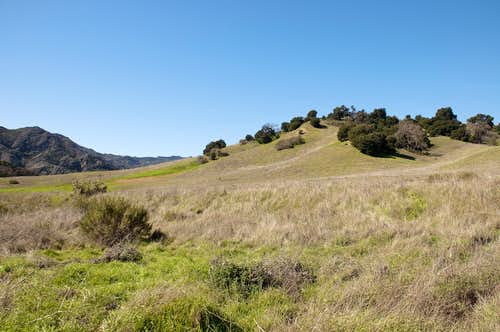 Grassland Trail in Malibu Creek State Park