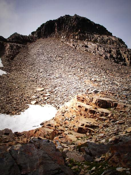 Gothic Peak Talus/Scree field