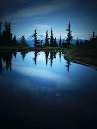 Tarn in the 1st major Meadows