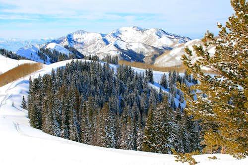Desolation Peak's west ridge and beyond.
